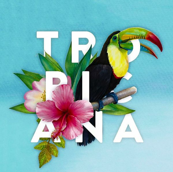 Warm balmy summer nights and cocktails go hand-in-hand. And if you're looking for a place where you can watch the world go by, check out Club Tropicana.