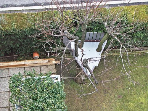 Il rifugio sull'albero
