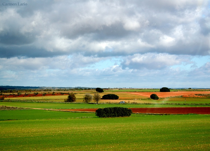 Colores de La Mancha