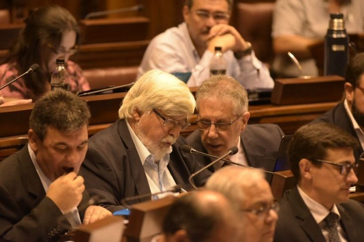 Cardoso aseguró que el Ministerio del Interior intervino su teléfono | parlamento, Asesinato, Bonomi, Clásico, Datos, Frente Amplio, hurtos, Ministerio del Interior, Policía, rapiñas, Seguridad, Violencia de género