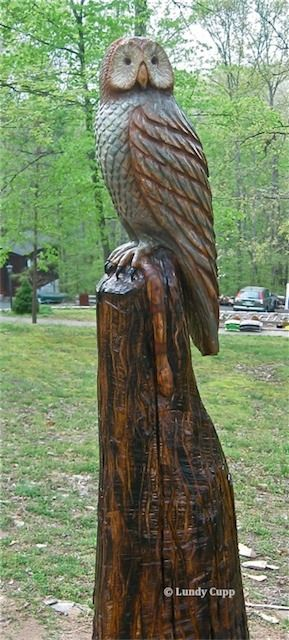 carving+tree+trunks | Carved Owl in tree trunk. The stump is 6 - 1/2 feet tall. The owl is ...