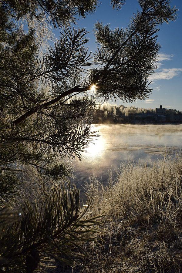 Winterwonderland 2017 on Behance