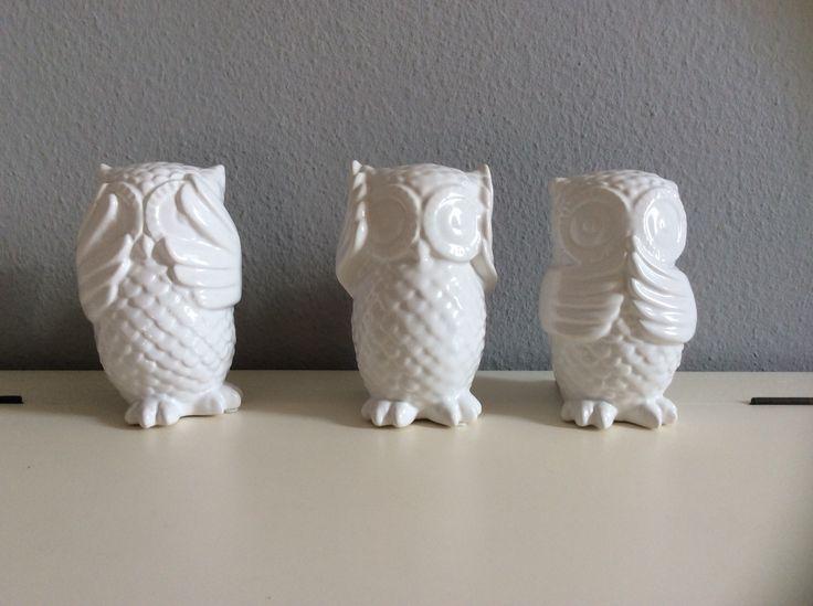 See no evil, hear no evil, talk no evil...  Owls/Eulen
