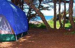 Twin Shores Camping Area  705 Lower Darnley Road Darnley, PEI
