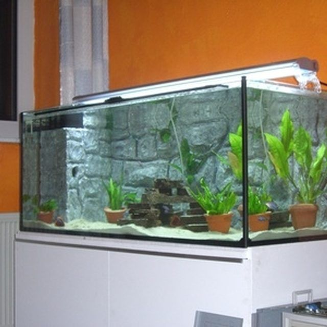Sand is a good choice for your aquarium