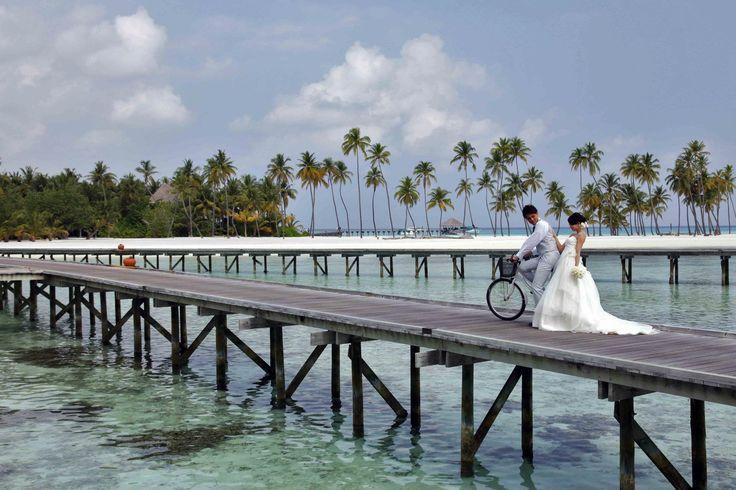wedding at gili lankanfushi maldives weddings maldives