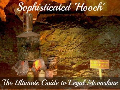 Sophisticated 'Hooch': The Ultimate Guide to Legal Moonshine by Christine Garvin #liquor #cocktails #recipes
