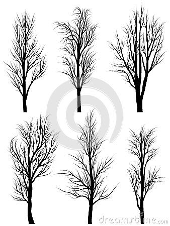 "Silhouettes of birch trees without leaves. Add a bird of a contrasting color. ""There are two gifts we should leave our children. One is roots and the other is wings."" The birch tree symbolizes new beginnings/renewal."