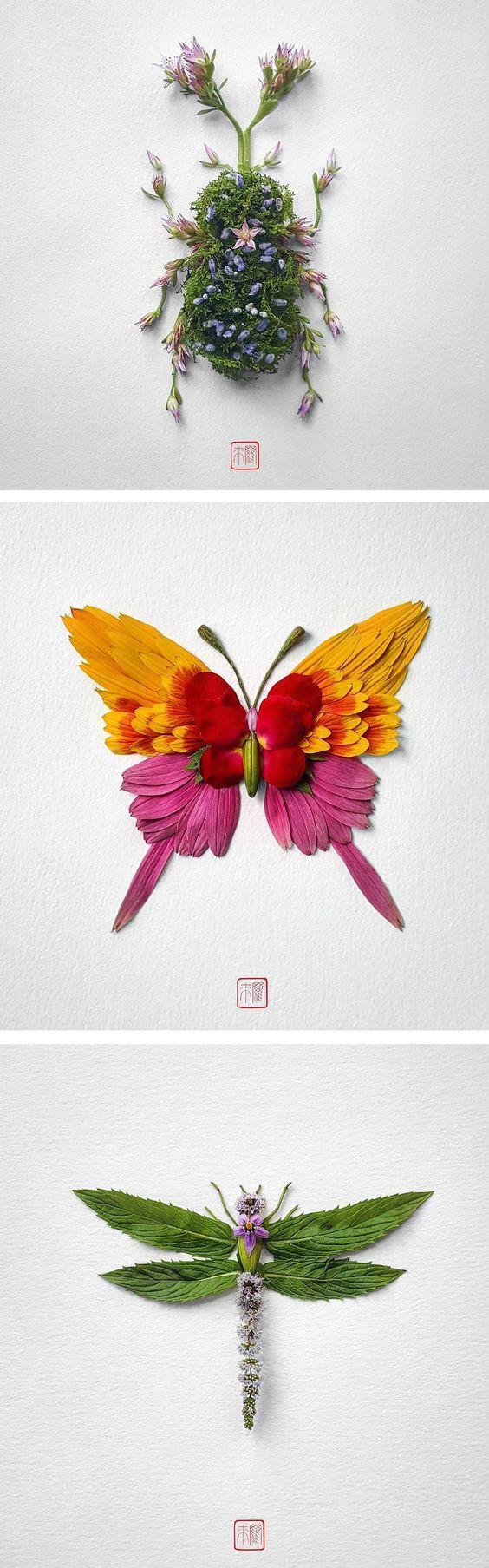 Insect Flower Arrangements by Raku Inoue