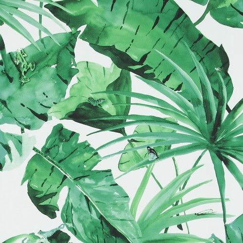 "Found it at Wayfair - 33' x 20.8"" Tropical Natural Leaves Wallpaper"
