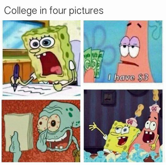 On college: | 32 Times SpongeBob Perfectly Summed Up Your Life