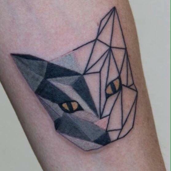 Geometric Cat!