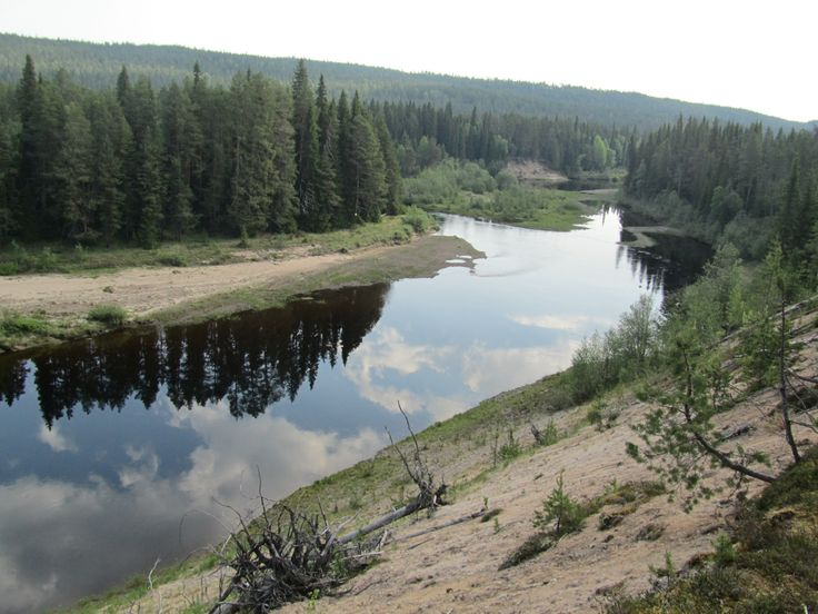 Oulanka River near Ansakämppä