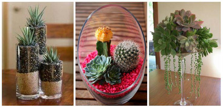 Cum realizam aranjamente din plante suculente. Idei creative Cum realizam aranjamente din plante suculente. In articolul de astazi gasim idei creative de a realiza aranjamente din astfel de plante. http://ideipentrucasa.ro/cum-realizam-aranjamente-din-plante-suculente-idei-creative/ Check more at http://ideipentrucasa.ro/cum-realizam-aranjamente-din-plante-suculente-idei-creative/
