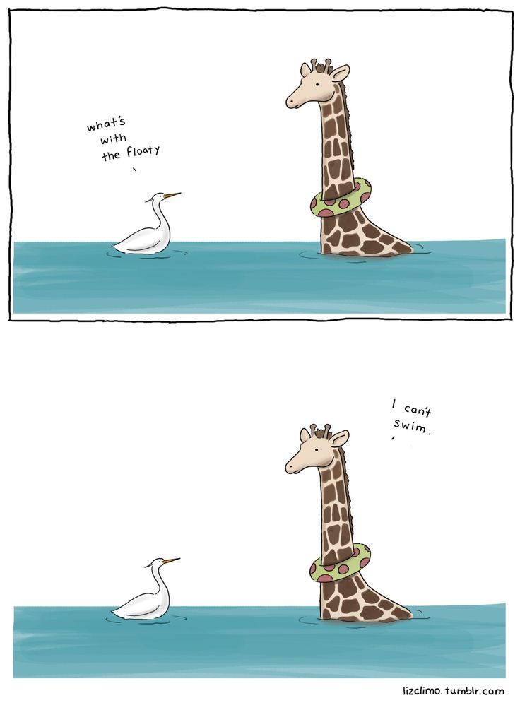 I found the true source, and there are lots! Liz Climo tumblr, she must be awesome!