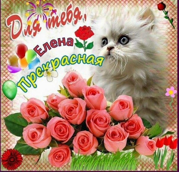 Поздравление елене с днем рождения открытка, открытки