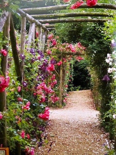 garden path love the old wooden trellis...