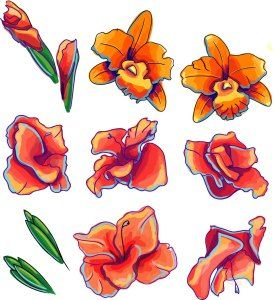 ORCHID FLOWER VECTOR SET - http://freepicvector.com/orchid-flower-vector-set/