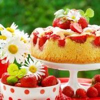 Vlaaivulling van vruchten | Taarten maken, taart bakken en cupcakes versieren | Taart recepten