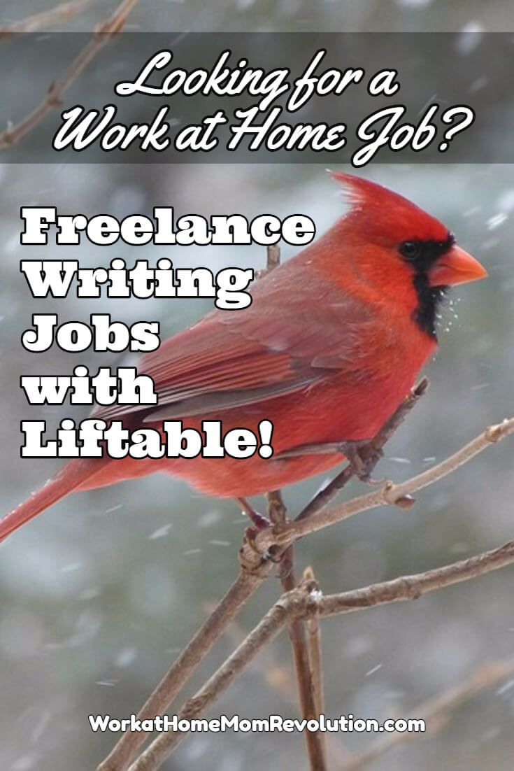 1000 images about lance writing liftable is hiring lance writers on a contract basis to write articles on a variety of