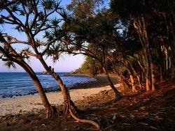 Tea Tree Beach, Noosa National Park, Queensland, Australia