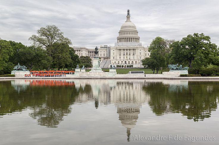 The Capitol, Washington DC