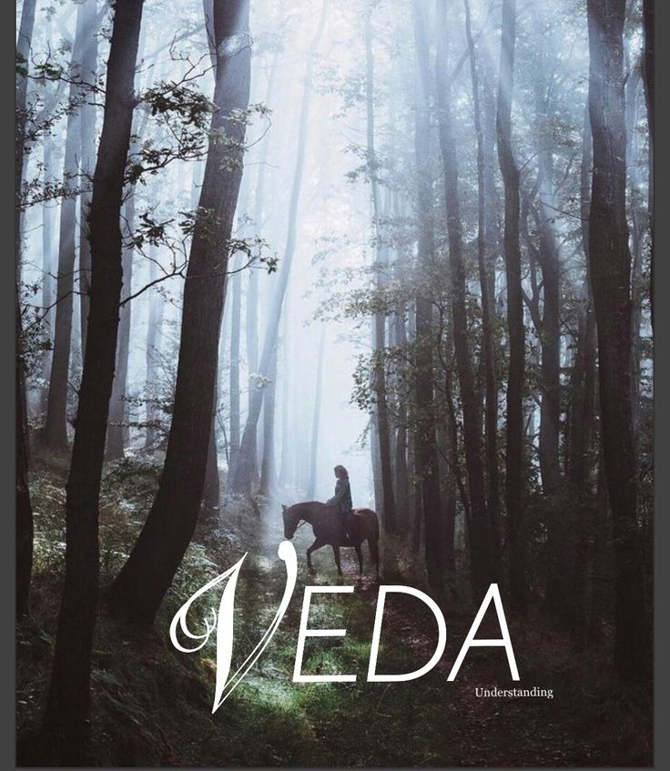 Veda / understanding (by Samantha Harrington)