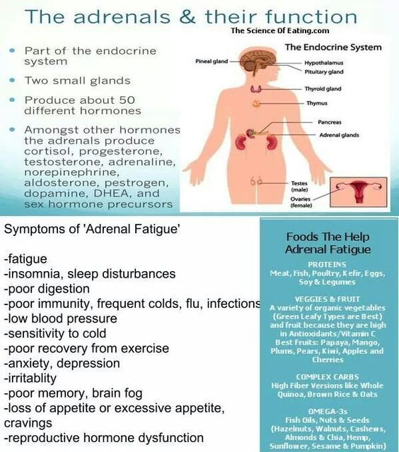 """I went to SOOO many doctors who all told me my symptoms were """"in my head"""".  When it became so severe I could barely function as a mom or nurse, I started researching for myself and demanded my adrenal function/levels be tested!"""