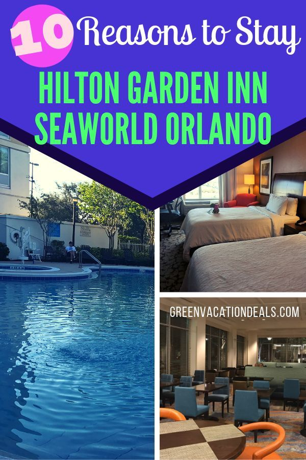 04a37f24406f4501633d8e43383c4678 - Hilton Garden Inn Tampa North Busch Gardens Reviews