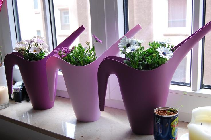 109 besten kreative blument pfe bilder auf pinterest for Blumentopf verkleidung