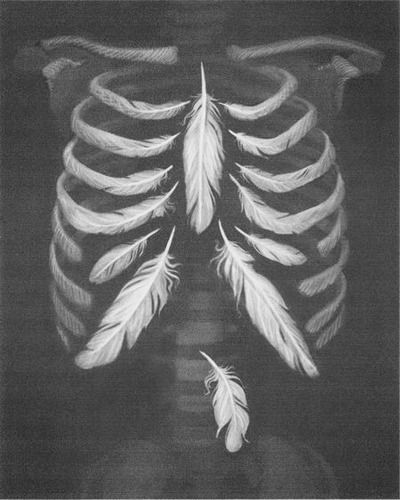 1000  images about Lung Thoughts on Pinterest | Respiratory system ...