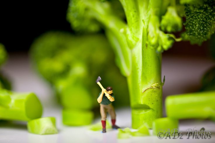 Little People Doing Big Things by adzphotos on Etsy, $40.00