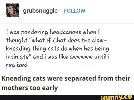 THIS IS WRONG! CATS KNEAD BECAUSE THEY ARE MARKING THEIR TERRITORY BY SWEATING THROUGH THEIR PAW PADS!