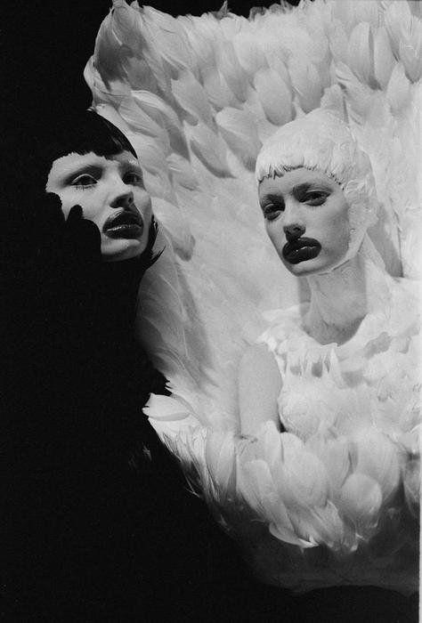 Alexander McQueen -  Flight of the Swan  - #Shadowflower