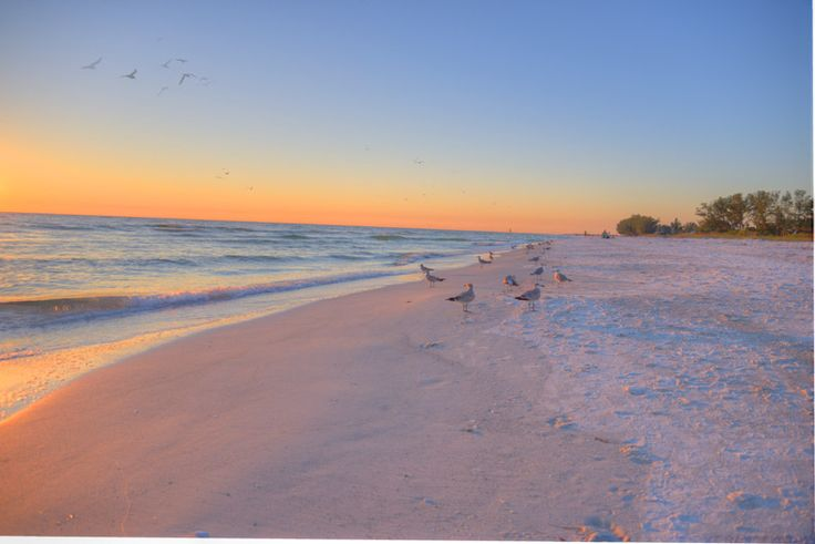 Looking for peace and tranquility? Mermaids Crossing beach rental on Anna Maria Island, Florida is your answer when you rent anytime October thru December. It's peaceful, the beach is quiet and the weather beautiful. Rent now at https://www.annamaria.com/vacation-rentals/prop/mermaids-crossing/