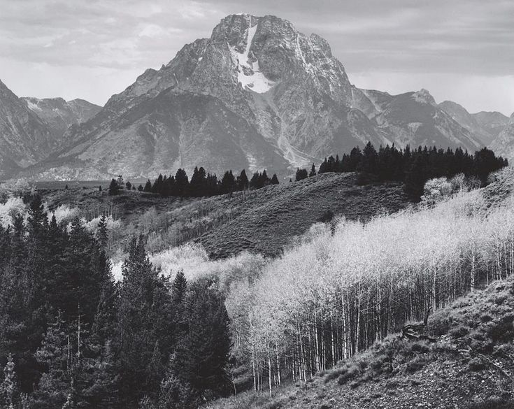 1670 best ansel images on pinterest ansel adams for Ansel adams mural