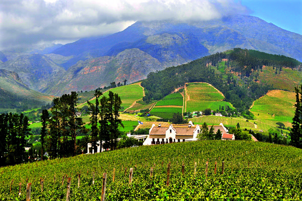 With strong French heritage, striking natural scenery, beautiful architecture and forward-thinking vignerons, read Angela Lloyd's Franschhoek travel guide.