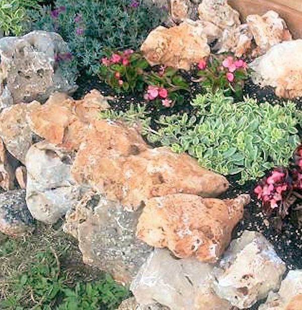 Pietre Per Arredo Giardino.Pietre Naturali Rocce Decorative Per Giardinaggio Giardinaggio Idee Giardino Roccioso Giardino