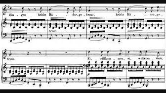 Franz Schubert - Winterreise - YouTube