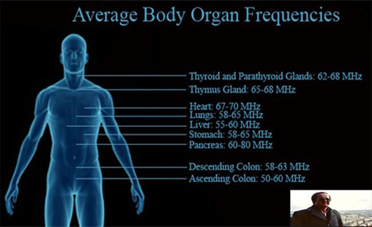 human resonant frequency - Google Search