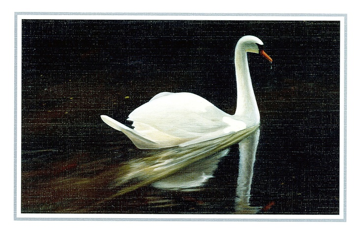 The talented Mouth and Foot Painting Artist from Australia who created this beautiful image of a swan is D. Nolt. 'Serenity' is the title. And D. Nolt also uses his/her mouth for creating their art. So beautiful! And it is emanating serenity! This might have to be the desktop pic of the week seeing as I have lots of thesis stress coming up. http://www.mfpa.com.au/ I wish I had their talent I'm so jealous and glad that these artist share their amazing talents with us. Truly inspired forever…
