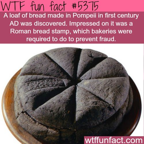 Loaf of bread from the first century AD found in Pompeii - With A Stamp Of  Authenticity!  ~WTF! Weird & fun facts
