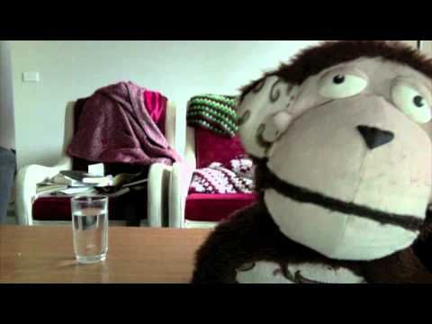 ▶ Persuasive Monkey - YouTube. My year 3 class loved this video last year. They actually wrote their own great persuasive texts based on this topic after watching and discussions. Can pigs fly? What do you think?