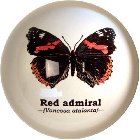 Gift Republic Butterfly Paperweight – Next Day Delivery Gift Republic Butterfly Paperweight from WorldStores: Everything For The Home