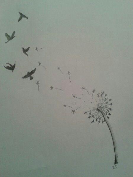 Pissenlit et oiseaux