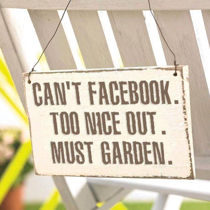 Quotes About Being Too Nice: Best 25+ Funny Garden Quotes Ideas On Pinterest