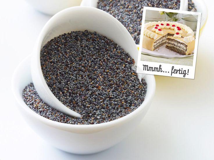 Ein echter Klassiker für die Kaffeerunde: Wir erkären Schritt für Schritt, wie Sie eine sahnig-süße Mohn-Marzipan-Torte backen.