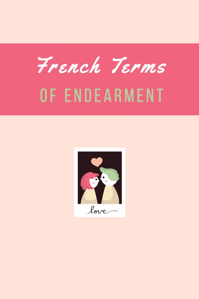 Cute (sometimes silly) French nicknames to call your loved ones. Which one do you think is the sweetest? #ValentinesDay Happy Valentine's Day from TalkinFrench.com!  https://www.talkinfrench.com/80-french-terms-of-endearment-to-call-your-loved-ones/ Get all the French vocabulary you would ever need. 50 topics covered, 20,000+ French words translated. It's all here: https://store.talkinfrench.com/product/french-vocabulary-ebook/