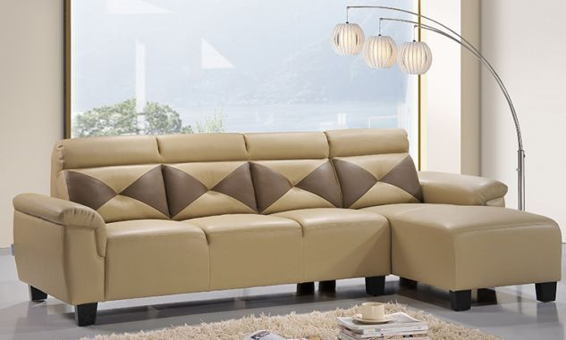 Leather sofa for home