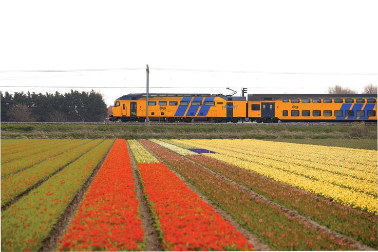 1000+ images about Eurail Route: Amsterdam to Brussels on ...